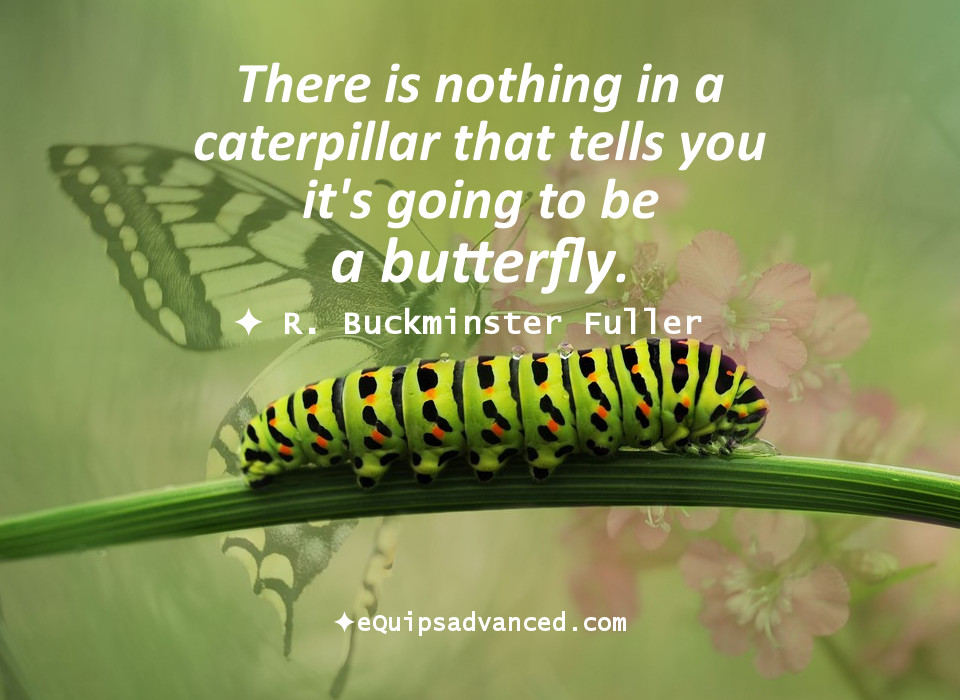 Caterpillar-Fuller