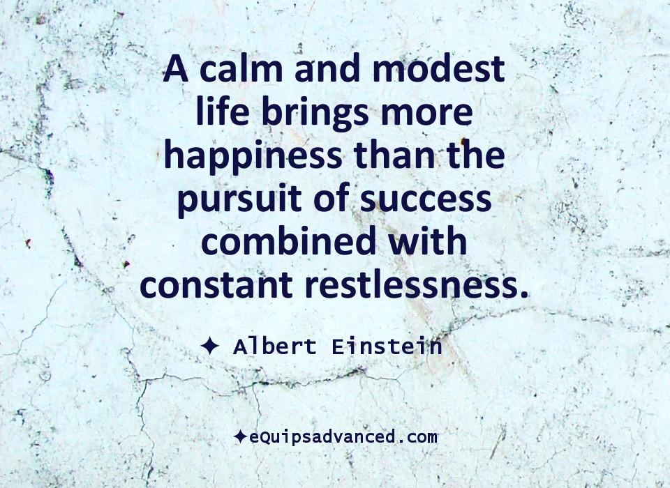 CalmAndModest-Einstein